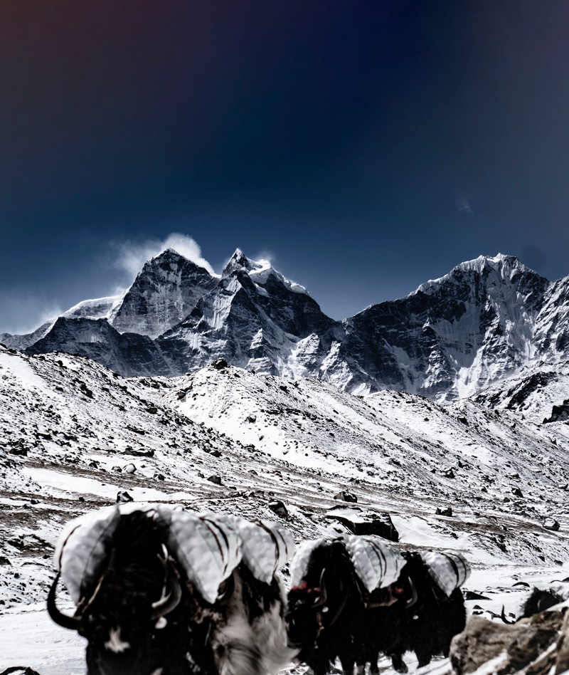 Everest Trekking During Summer