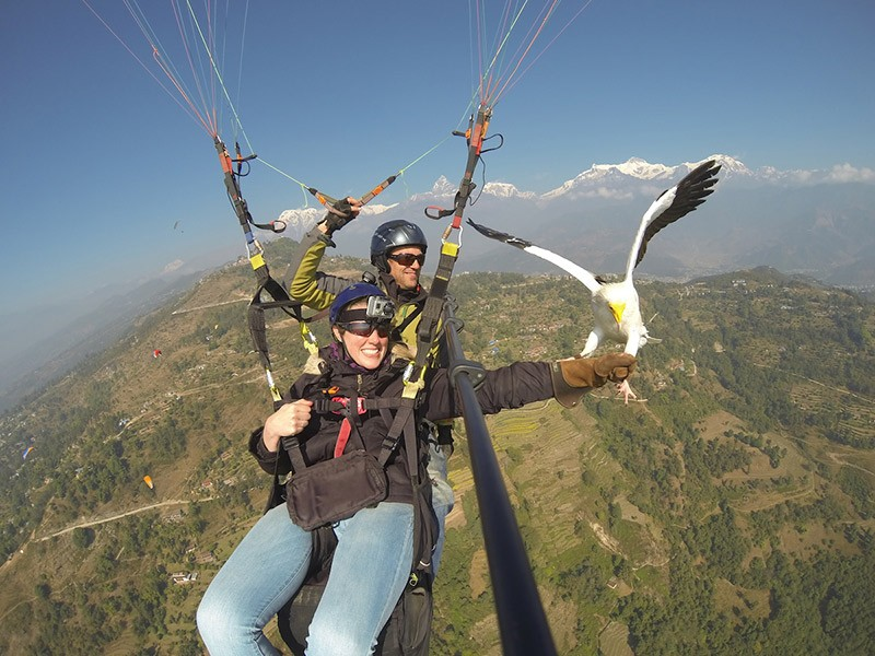 Adventurous Sport Parahawking in Nepal