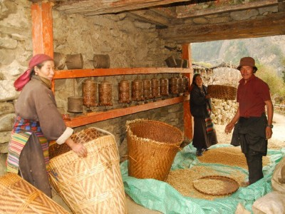 Local Lifestyle In Manaslu Region