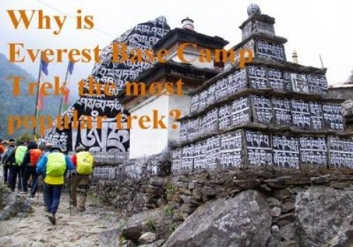 Reasons Why Everest Base Camp Trek is most popular trek: